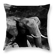 Qn The Move Throw Pillow