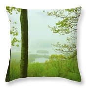 Quabbin Reservoir Spring Rain Throw Pillow