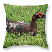 Quack Throw Pillow