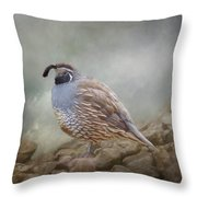 Quail On The Rocks Throw Pillow