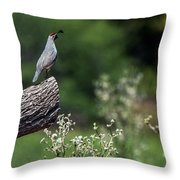 Quail Watching Throw Pillow