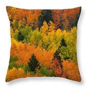 Quaking Aspen And Ponderosa Pine Trees Throw Pillow
