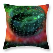 Quantum Theory Throw Pillow