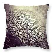Quarter Throw Pillow