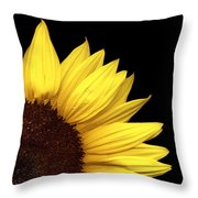 Quarter Sun Throw Pillow