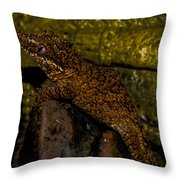 Quasi Gargoyle Throw Pillow