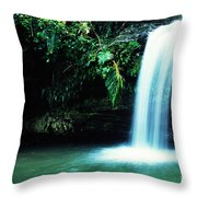 Quebrada Juan Diego Waterfall Mirror Image Throw Pillow
