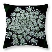 Queen Anne Throw Pillow