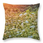 Queen Anne At Sunset Throw Pillow