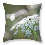 Queen Anne In The Morning 2 Throw Pillow