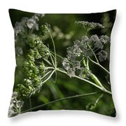 Queen Anne Lace In The Wind Throw Pillow
