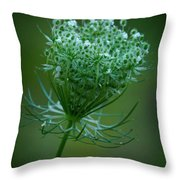 Queen Annes Lace - 365-164 Throw Pillow