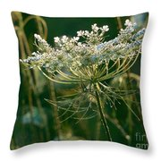 Queen Anne's Lace In Green Horizontal Throw Pillow