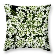 Queen Anne's Lace Patterns Throw Pillow