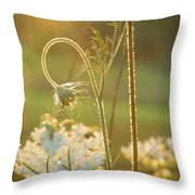 Queen Anne's Lace Sunset Throw Pillow