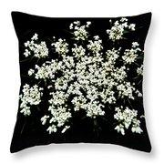 Queen Anne's Lace Wildflower - Daucus Carota Throw Pillow