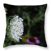 Queen Anns Lace Throw Pillow