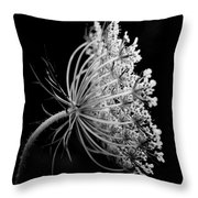 Queen Ann's Lace Side Throw Pillow