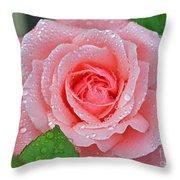 Queen Elizabeth Unfolded Throw Pillow
