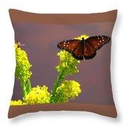 Queen Fritillary Throw Pillow
