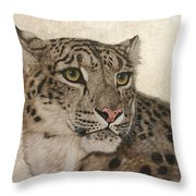 Queen Of The Himalayas  Throw Pillow