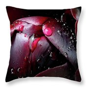 Queen Of The Night Cries In Joy Throw Pillow