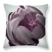 Queen Of The Night In Bloom Throw Pillow