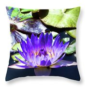 Queen On The Lake Throw Pillow