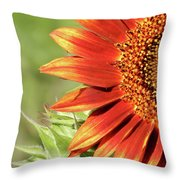 Queen Red Throw Pillow