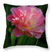 Queensland Tulip Throw Pillow