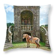 Quelven Village Square, Awaiting His Owner, Brittany, France Throw Pillow
