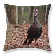 Questioning Wild Turkey Throw Pillow