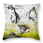 Quick Dip Throw Pillow