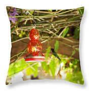 Quick Snack Throw Pillow