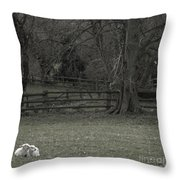 Quiet Afternoon Throw Pillow