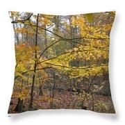 Quiet Autumn Morning Throw Pillow