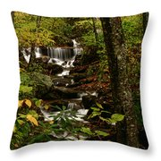 Quiet Autumn Stream Throw Pillow