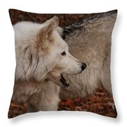 Quiet Back There Throw Pillow