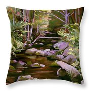 Quiet Brook Throw Pillow