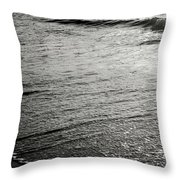 Quiet Mind Throw Pillow by Eric Christopher Jackson