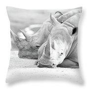 Rhino Quiet Moment Throw Pillow