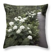 Quiet Pathway Throw Pillow