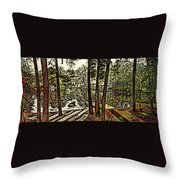 Quiet Pond Throw Pillow