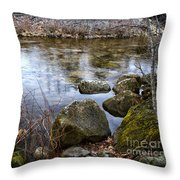 Quiet Reverie Throw Pillow