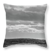 Quiet Shores After The Storm Throw Pillow