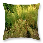 Quiet Solitude Throw Pillow