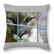 Quiet Thoughts Throw Pillow
