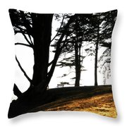 Quiet Time Of Day Throw Pillow
