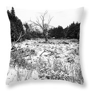Quiet Winter Black And White Throw Pillow