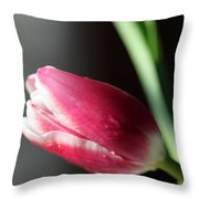 Quietly Throw Pillow
